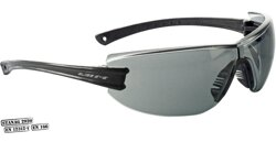Swiss Eye F-22 (40281)